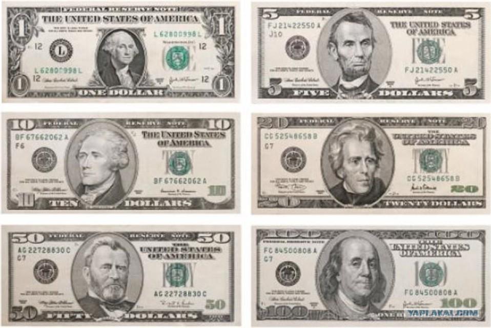 единственный номинал долларовых банкнот картинки вашему