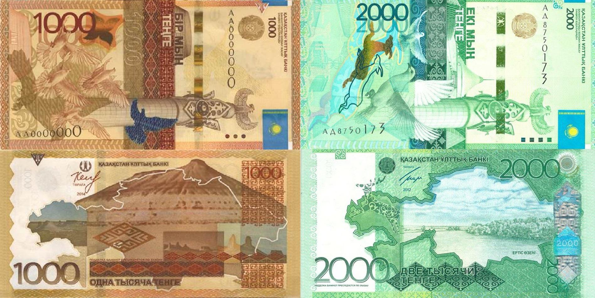 денежные купюры казахстан фото образцы многолетние травянистые