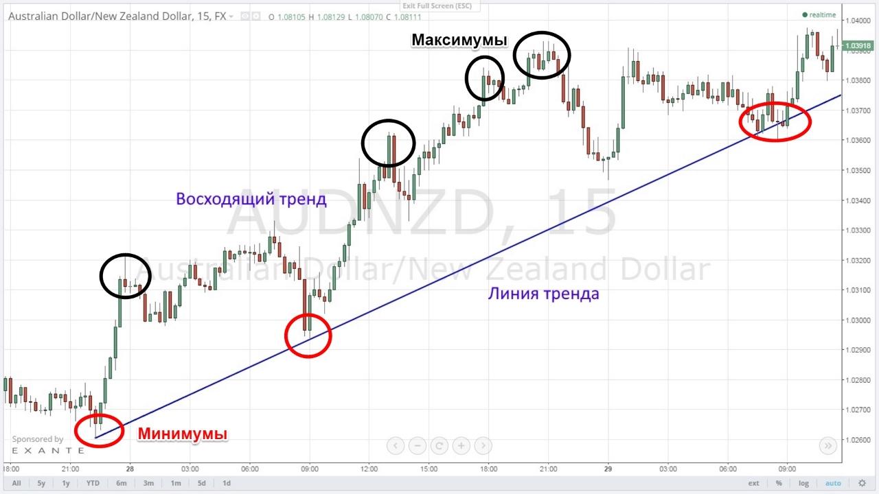 Форекс: основы анализа рынка и прогноза котировок