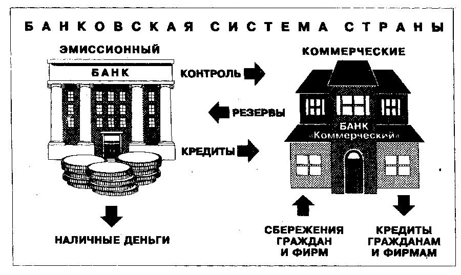 Банки: этапы становления банковской деятельности, виды банков, банковская система
